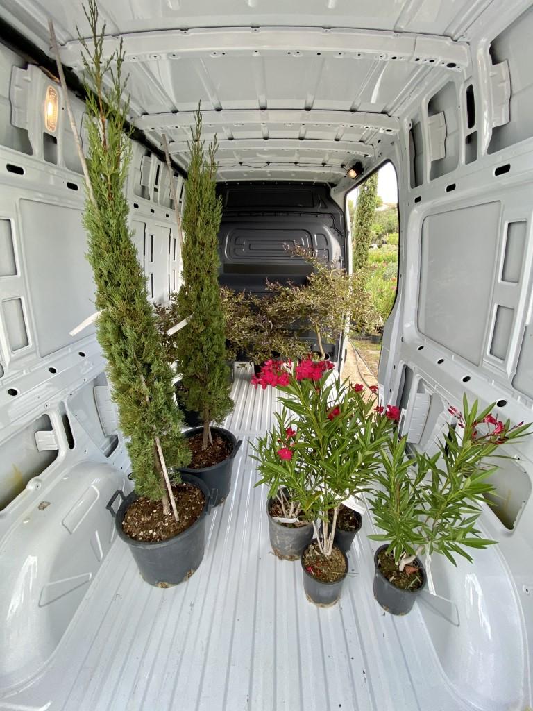 Νέο Sprinter Van PRO 6