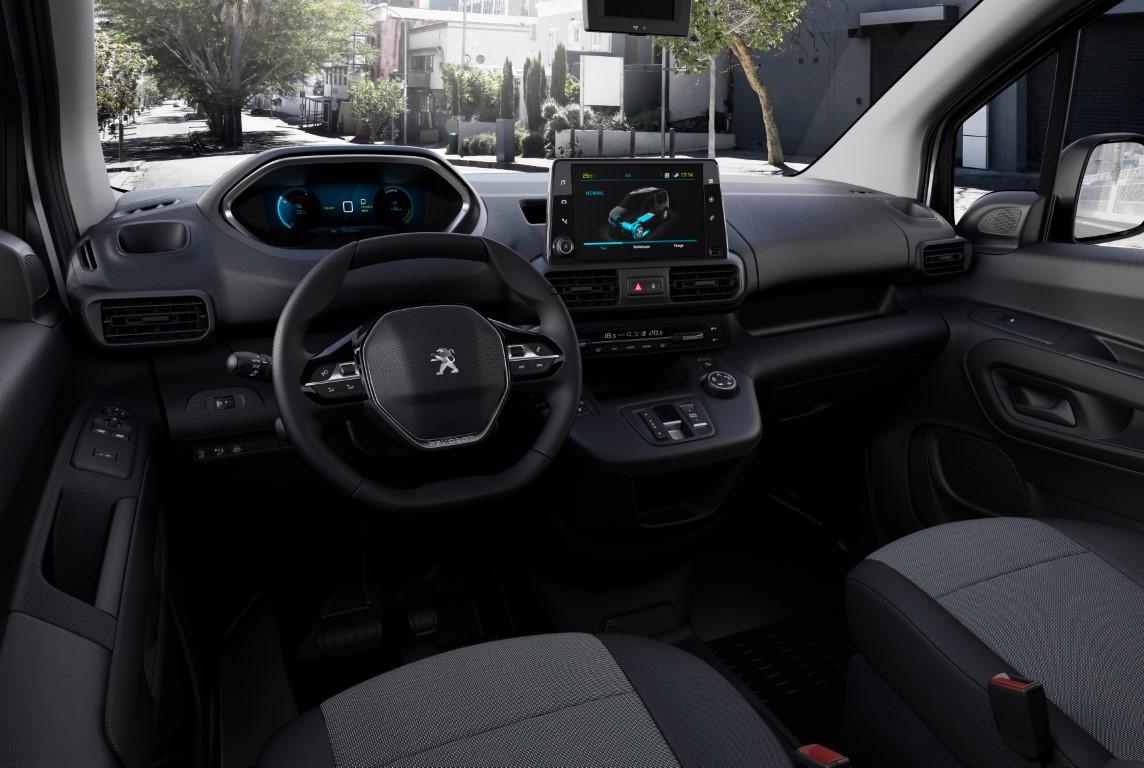 PSA (Citroen-Peugeot) (10)